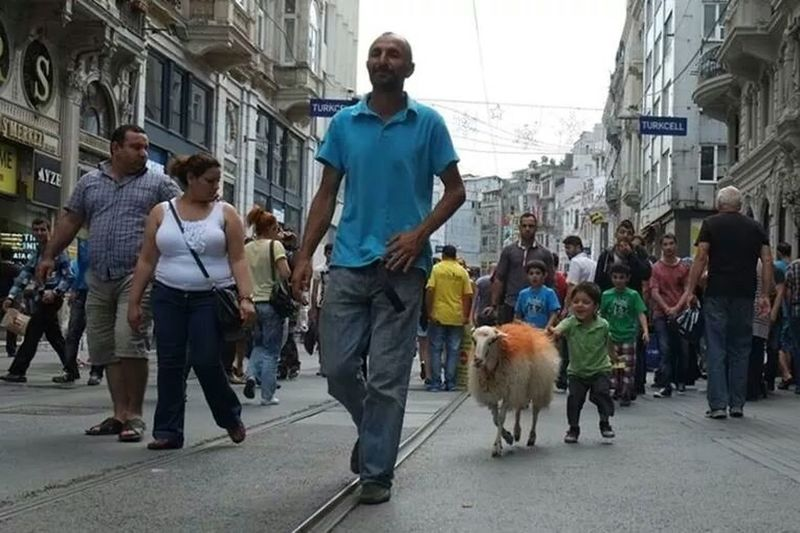 Finding The Next Vivian Maier Istanbul #turkiye Street EyeEm Best Shots