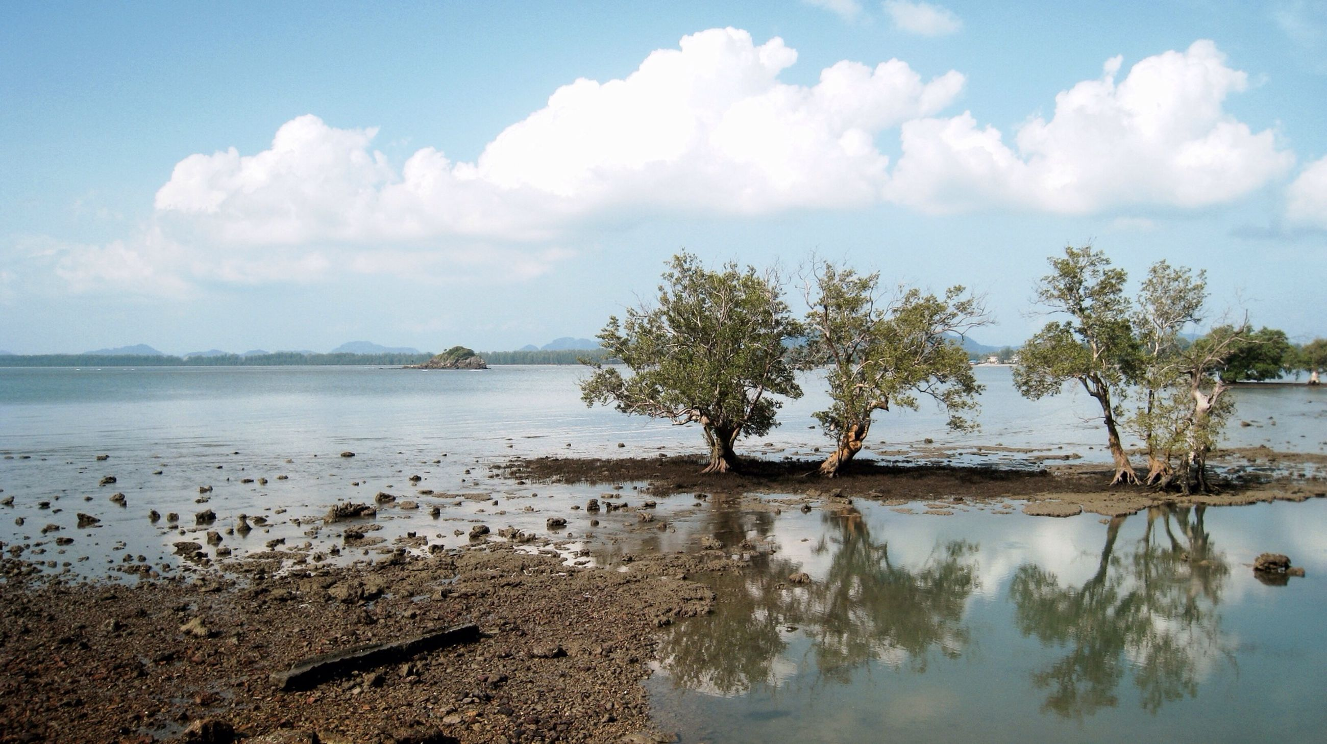 water, sky, tranquil scene, tranquility, tree, scenics, reflection, cloud - sky, beauty in nature, nature, lake, cloud, beach, sea, calm, idyllic, shore, day, blue, waterfront