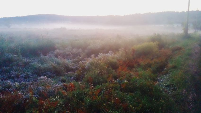 Fall Maine Nature No People Sunrise_sunsets_aroundworld The Great Outdoors - 2015 EyeEm Awards The Great Outdoors With Adobe