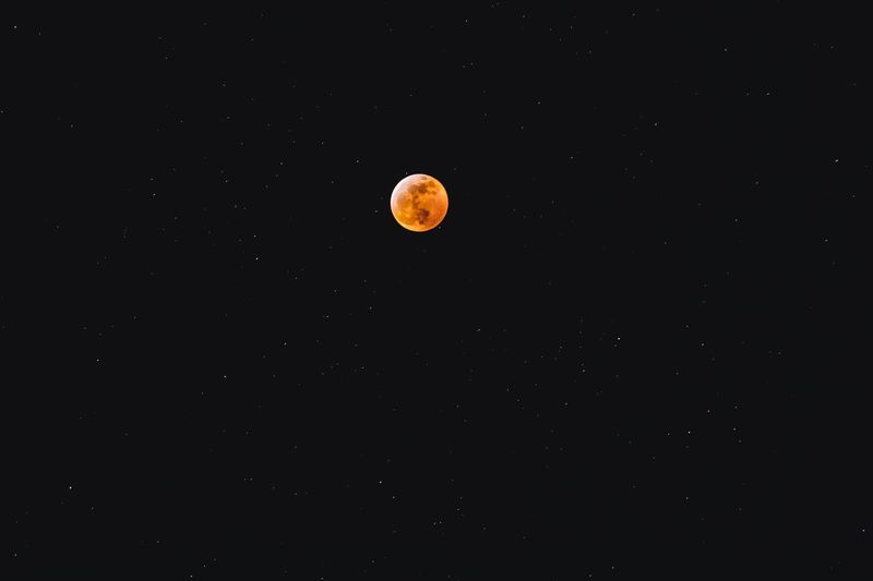 Blood moon eclipse Lunar Eclipse Stars Copy Space Night Space Astronomy Beauty In Nature Sky Tranquility Moon Tranquil Scene Orange Color Natural Phenomenon Full Moon Star - Space Eclipse