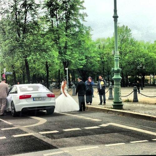 Ne gerzek milletiz !!! Şimdi bu moda oldu.. Berlin'in en işlek caddesinin üzerinde kesinlikle durması yasak olan yere durup fotograf çektiren çiftler !!! Dün hatta Angarali Namık sonuna kadar açıktı !!!!