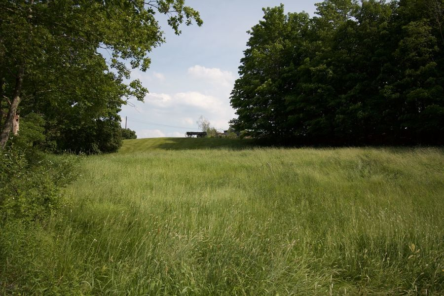 Beauty In Nature Day Field Grass Green Color Landscape Nature No People Outdoors Sky