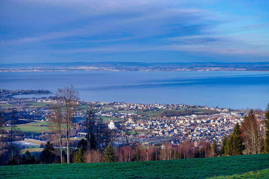 View from Eggersrieter Höhe over a part of Lake Constance. Eggersriet Lake Constance St. Gallen Beauty In Nature Cities Clouds Day Grass Höhe Lake Landscape Nature No People Outdoors Overview Scenics Shores Sky Switzerland Tranquil Scene Tranquility Tree Water