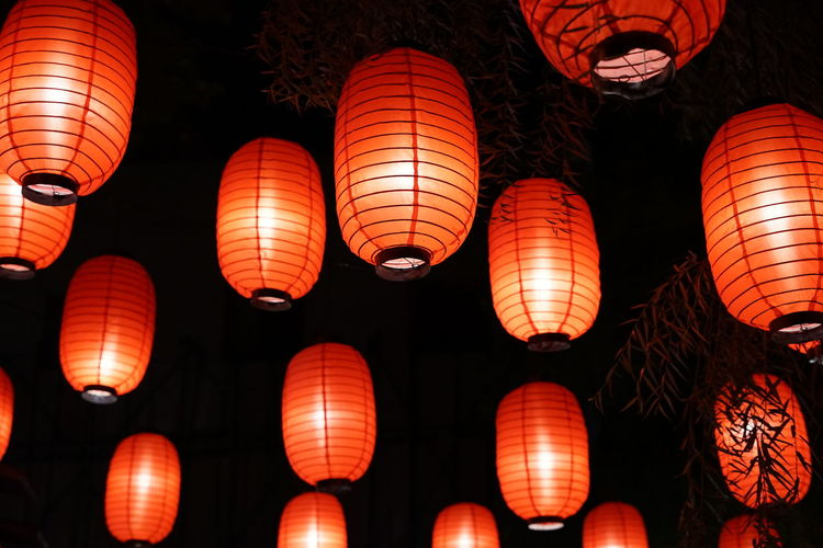 Chinese Lantern Lighting Equipment Illuminated Chinese Lantern Lantern Low Angle View Hanging Night Decoration Traditional Festival Chinese Lantern Festival Celebration Chinese New Year Paper Lantern