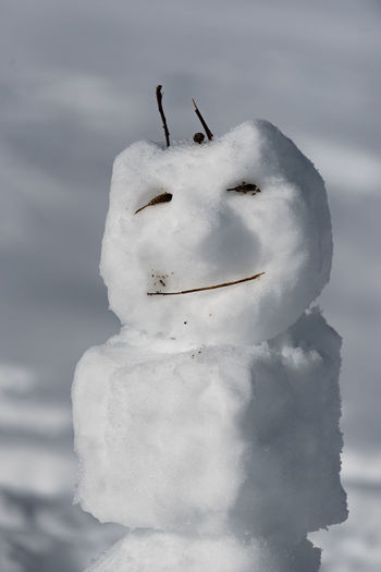 Cold Temperature Day Frozen Ice Nature No People Outdoors Representing Sky Snow Snowman Winter
