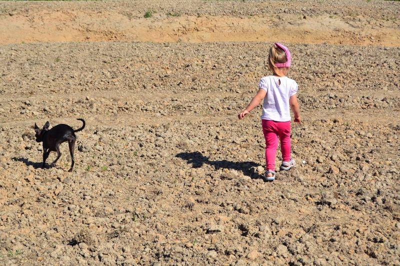 Sand Dune Child Childhood Full Length Girls Sand Pets Dog Standing Only Girls Children Walking Friend Plastic Environment - LIMEX IMAGINE