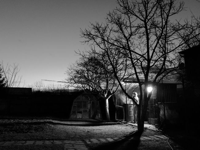 Nature Dual Camera HuaweiP9 NiceCamera Slovakia Amateurphotography Leica_camera Blackandwhitephotography Slovakia Photos Night Time