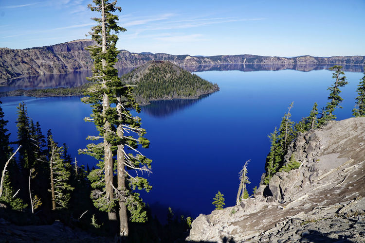 Panoramic view of lake and trees against blue sky