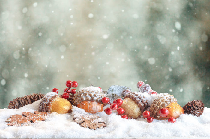 Christmas decoration in snowy winter bokeh background. Pine cones, acorns and Oak leaves. Christmas Happy Holidays Kids MerryChristmas New Year Red Santa Claus Winter Xmas Xmas Decorations Background Balls Blue Candy Cane Celebration Event Design Magic Snow Snowy White Background