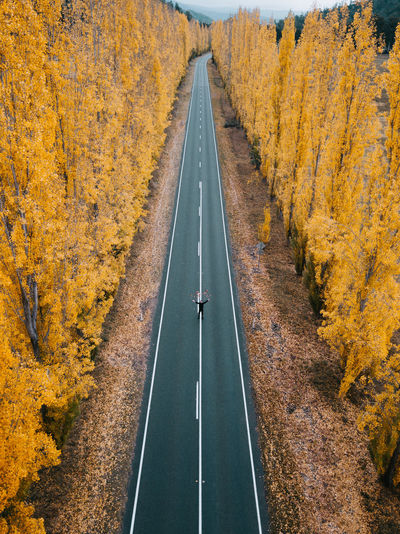 Drone  Aerial View Autumn Autumn Collection Beauty In Nature Change Day Diminishing Perspective Direction Dividing Line Dji Marking Nature Outdoors Plant Road Road Marking Sign Symbol The Way Forward Transportation Tree vanishing point Yellow The Great Outdoors - 2018 EyeEm Awards The Traveler - 2018 EyeEm Awards