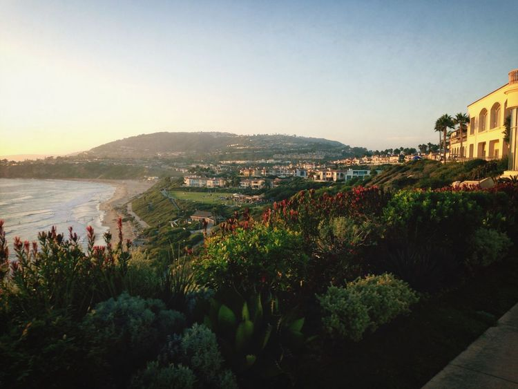Ritz Carlton, Laguna Niguel. The Ritz Carlton Dana Point, Ca California Love Ocean