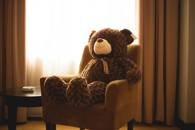 Teddy Bear On Armchair In Living Room At Home