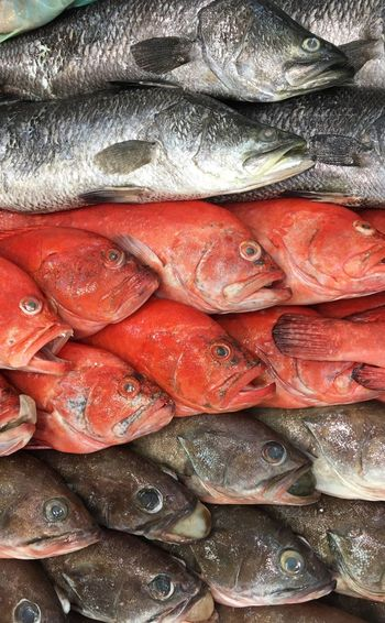 Full Frame Shot Of Fishes In Market For Sale