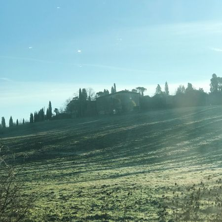Countryside Tuscany Backlight Green Fog  Sky Nature Landscape Tranquility Field Tree Beauty In Nature Scenics Tranquil Scene Rural Scene Day Outdoors No People Agriculture Winter