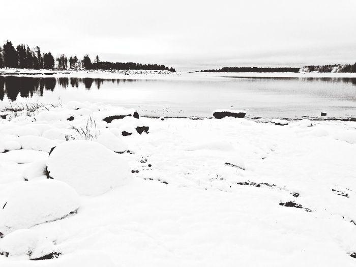 First snow, today we don't swim. Swedish Lapland