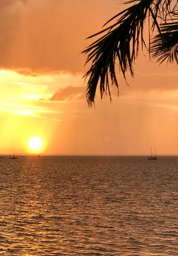 Sunset Sky Sea Water Beauty In Nature Scenics - Nature Tranquility Horizon Over Water Tranquil Scene Idyllic Orange Color Horizon Nature Sun No People Palm Tree Beach Tree Tropical Climate Outdoors