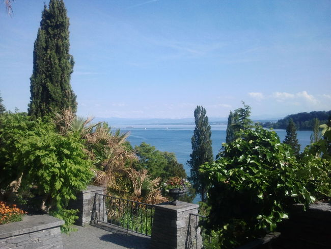 View from the isle of Mainau Landscapes And Lakeviews