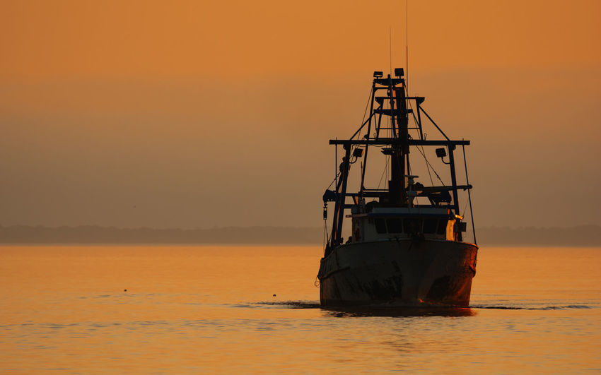Shrimp boat silhouetted at sunset on the ocean Boat Fishing Ocean Shrimp Shrimp Boat Silhouette Sunset Sunset Collection