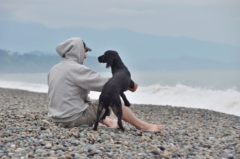 Man with dog sitting at beach against sky