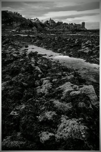 Landscape Outdoors Tourism Attractions Scenic Beauty Leisure Built Structure Castle Historic Buildings Historic Town St Andrews Scotland Harbourlife Rock Seascapes Black And White Photography