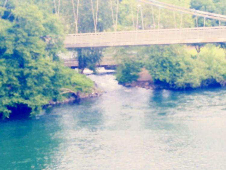 Footbridge along side of Ferry Street Bridge Essence Of Summer