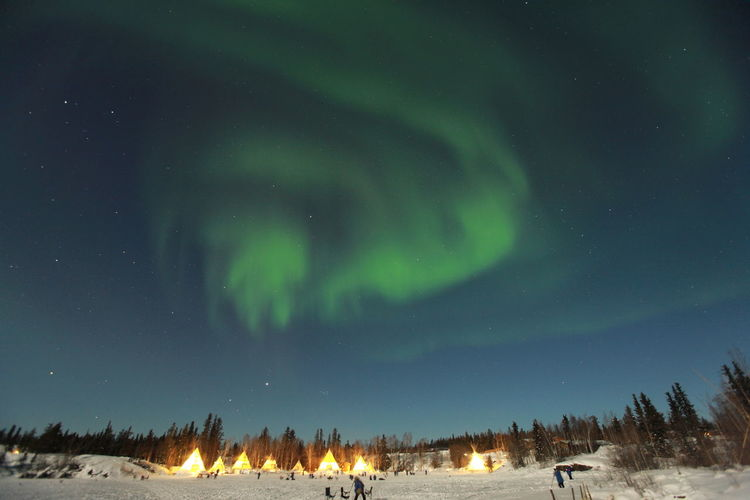 Aurora, Aurora Borealis Astronomy Aurora Borealis Aurora Polaris Beauty In Nature Cloud - Sky Cold Temperature Galaxy Green Color Illuminated Landscape Low Angle View Mountain Nature Night No People Outdoors Scenics Sky Snow Space Star - Space Tranquility Tree Weather Winter