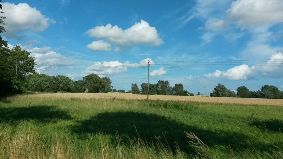 Nature Clouds And Sky Check This Out Holiday Taking Photos Hello World Enjoying Life Relaxing Hugging A Tree Summertime My Favorite Photo Schleswig-Holstein Landscape_Collection