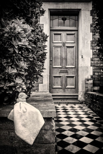 Lost without you Lost And Found Lost Toy Story Of My Life Storytelling Architecture Black And White Photography Blanket Building Exterior Built Structure Child's Toy Day Door No People Outdoors Streetphotography Toy Tree