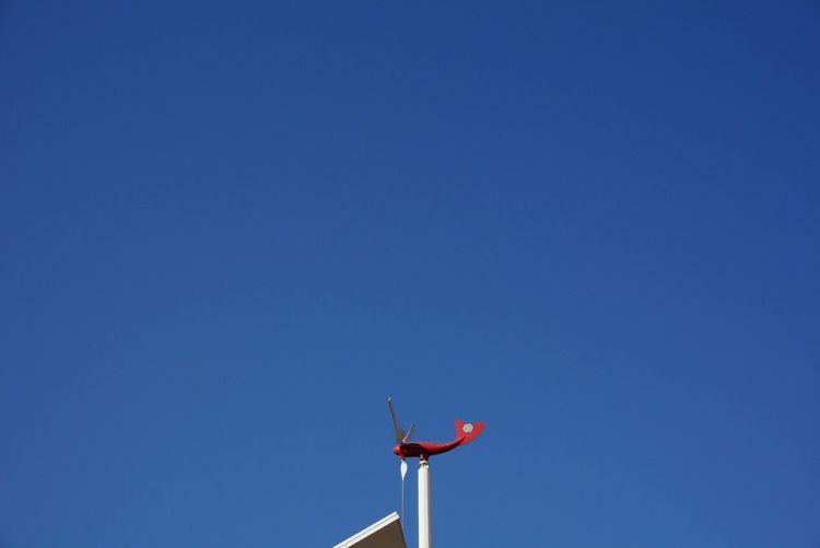 Low angle view of toy airplane against clear blue sky on sunny day
