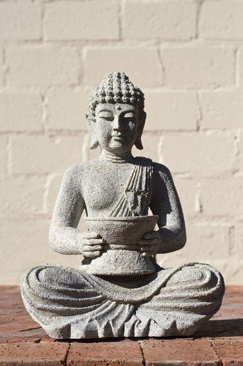 buddha plant statue EyeEm Best Shots Statue Buddha Pottery