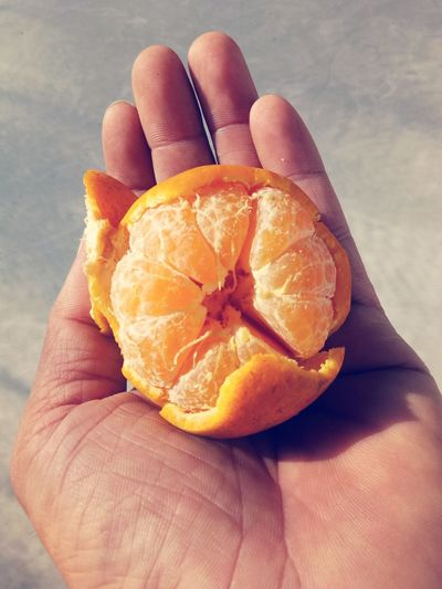 Close-up of hand holding orange