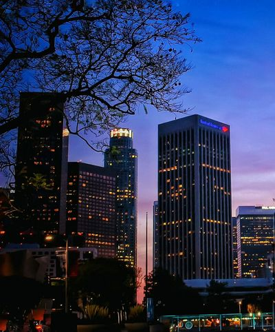 Night strolling... Downtown Los Angeles Skyscapes Buildings Nightphotography Night Lights Nightshot Night Out Night Time Night City Walking Around Los Angeles Downtown California