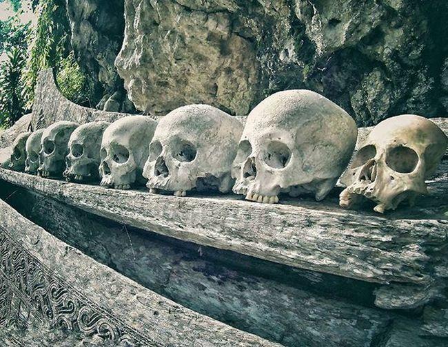The Skeleton around Ketekesutoraja Cliff ------------------------------------------------------------------------------------------ Toraja Culture Ethnic Ancient Believe Traditional Explore Toraja INDONESIA Traveling Aroundtheworld Myth Death Ceremony Amazing Photooftheday Photography Photographer Adventure Funeral Party Celebration sjcam citytour mustsee