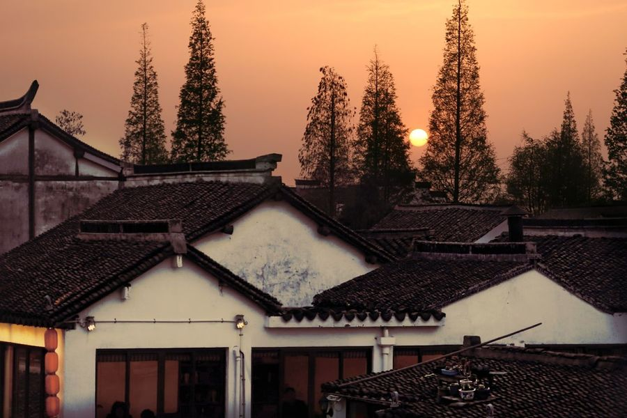 Yolk Shanghai EyeEmNewHere Tree Roof Architecture Building Exterior Sky House Sunset Roof Tile Country House Sun Rooftop Tiled Roof  TOWNSCAPE Orange Color