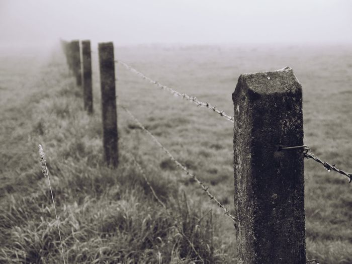 Barbed Wire Close-up Cold Temperature Day Focus On Foreground Fog Grass Landscape Nature No People Outdoors Protection Safety Sky Strength Water Wood - Material Wooden Post
