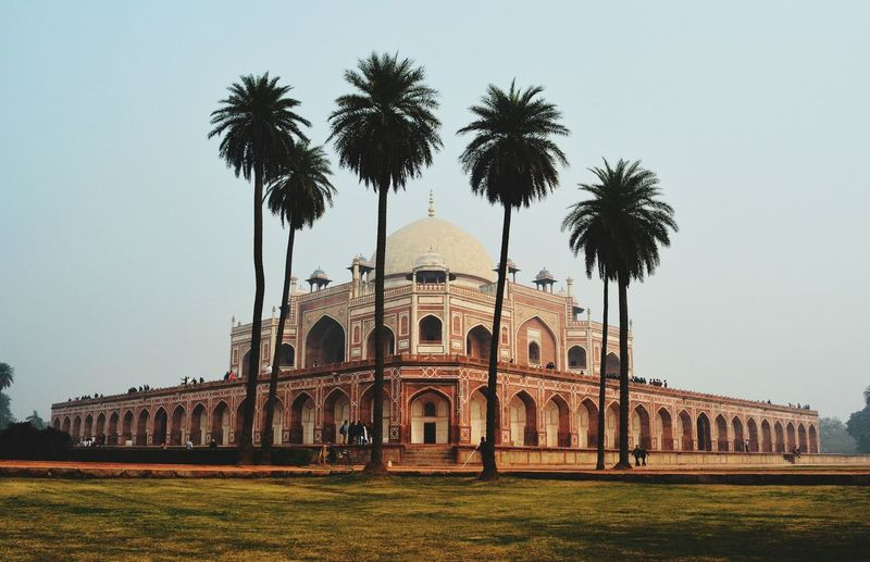 Palm trees against facade of humayuns tomb