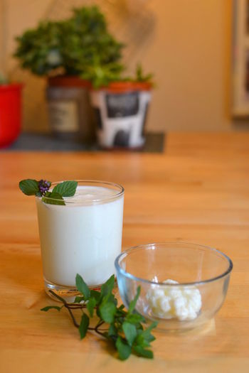 Close-up Day Drink Drinking Glass Focus On Foreground Food And Drink Freshness Healthy Eating Indoors  Kefir Kefirs Leaf Nature No People Plant Potted Plant Refreshment Table