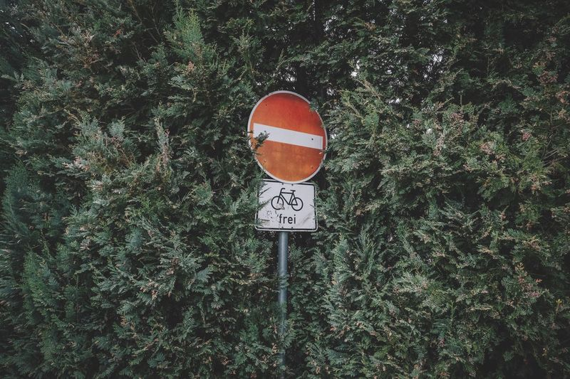 EyeEm Selects Warning Sign Road Sign Plant Art Art Is Everywhere Communication Circle Text Guidance Growth Day Green Color Outdoors No People Tree Nature Grass The Week On EyeEm Editor's Picks