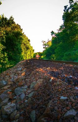 Looking To The Other Side Oncoming Train Eye Am Nature Leavin' On A Southern Train Sunlight And Shadow Treescape Lots Of Rocks Wrong Side Of The Tracks