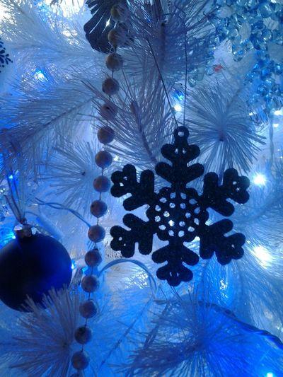 Merry Christmas Christmas Tree White Christmas Tree Streamzoofamily Tadaa Community Christmas 2015 Best Time Of The Year