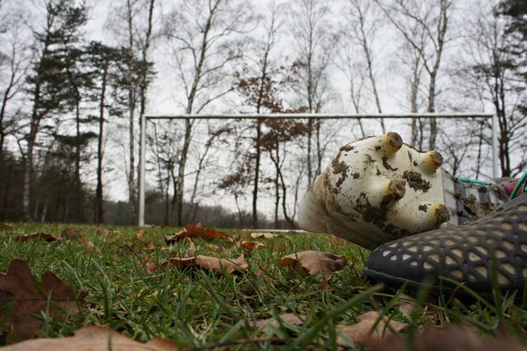 Autumn Day Football Fussball Grass Nature No People Outdoors Sky Soccer Soccerfield Tree