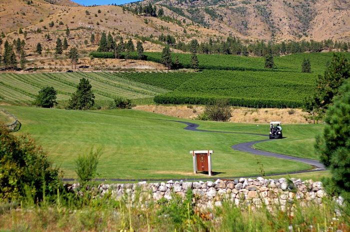Edge Of The World My Hobby Golf Relaxing Golfing Landscape The Great Outdoors - 2015 EyeEm AwardsBear Mountain Golf Course in Chelan, WA. Wine Moments