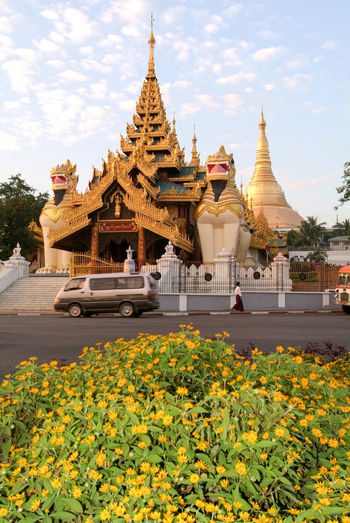Pagoda Yangon Architecture Building Exterior Built Structure Burma Day Flower Gold Colored Myanmar Nature No People Outdoors Place Of Worship Religion Shwedagon Sky Spirituality Travel Destinations Yellow
