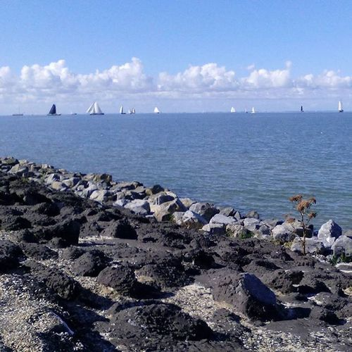 Ijsselmeer Sailingboat Sailing Stones Sky Clouds Skylovers Nature_picture Nature_perfection Nature Naturefreak Naturelover Waterview Lake Lakeview Nederland Netherlands Thenetherlands Nofilter Beautiful Allwhatsbeautiful Igholland Super_holland Holland_photolovers Ig_nlpics dutchview water Stavoren Friesland Fryslan