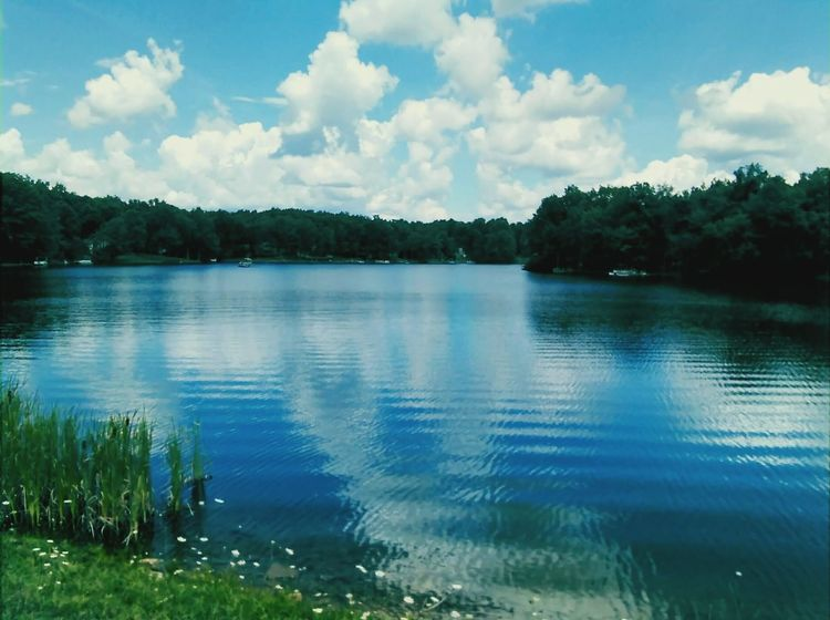 Waterscapes Water Water Reflections Tranquility Scenics Beauty In Nature Lake Sky Reflections Beautiful Nature Calm Cloudscapes Eye4photography  Me Rippled Trees No People Blue Idyllic Countryside Tennessee