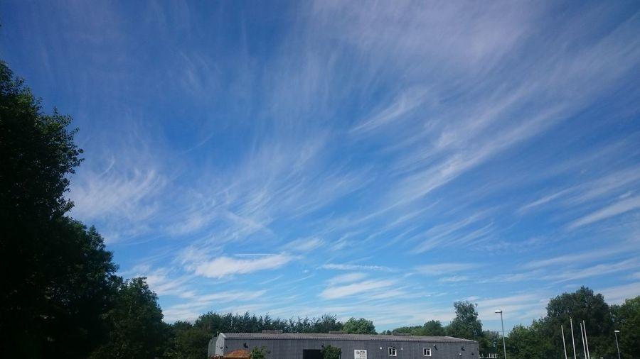Wispy skies (