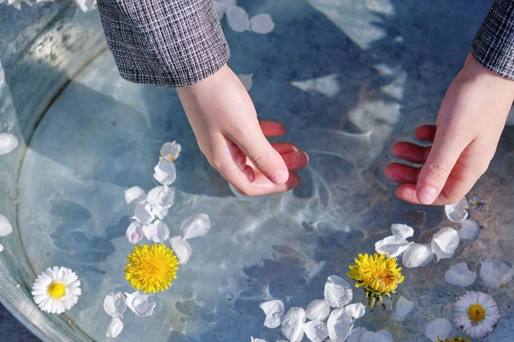 High angle view of hands holding flowers on floor
