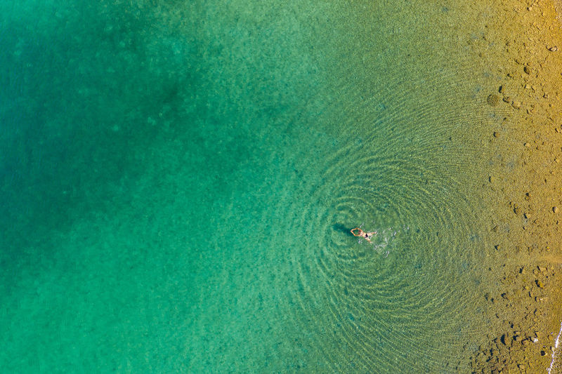 Aerial view of a girl is swimming in the clear sea of brijuni national park in croatian adriatic