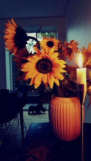 Illuminated lantern at home
