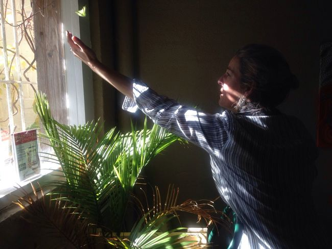 Asha's Wednesday Illuminated One Person Real People Indoors  Barterfly Window Butterfly - Insect Yellow Stripes Pattern Ferns Miracle Light And Shadow Luckylady Bartender Scarf Cool Connected By Travel